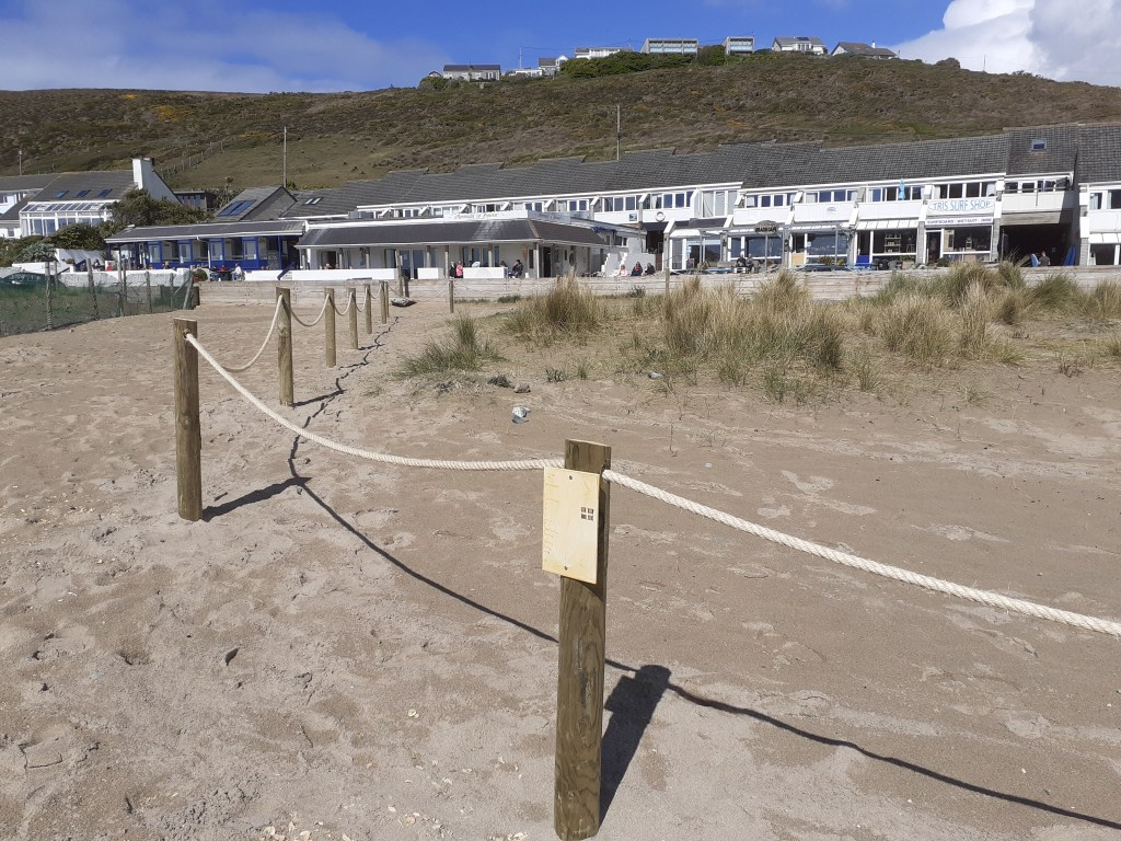 roped off dune plantings