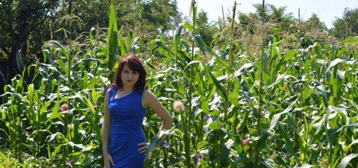 rochie albastră Fashion Mia
