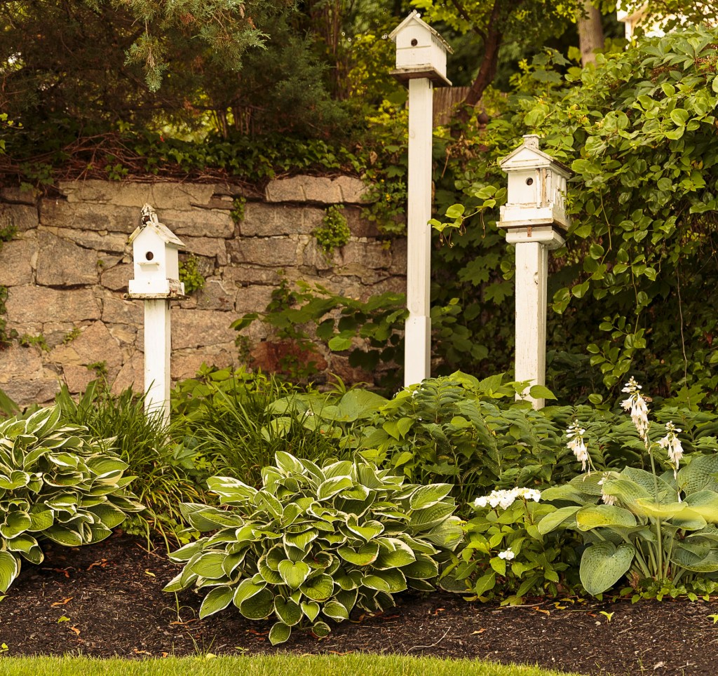 Betts Garden cropped