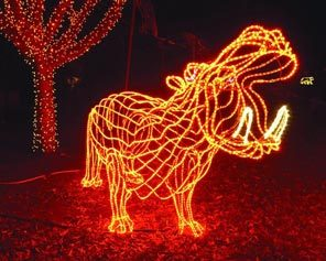 must see christmas lights in portland portland living on the cheap