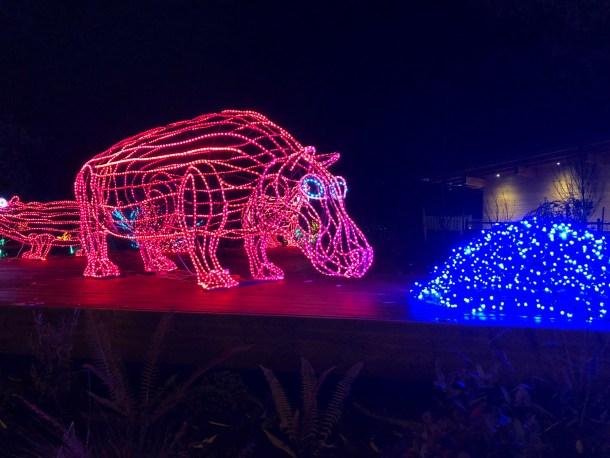 ZooLights holiday light displays
