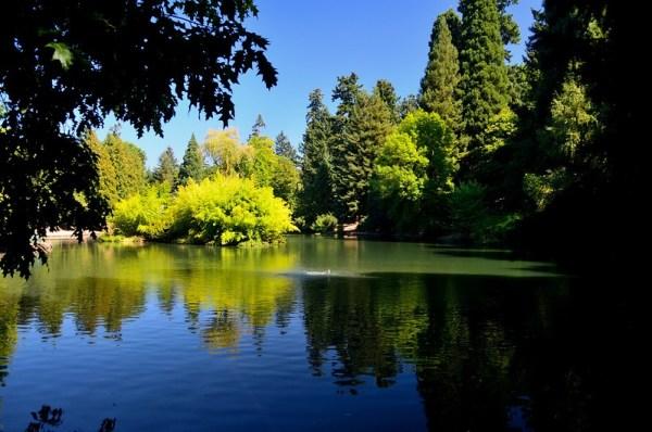 Portland picnic parks - Laurelhurst Park