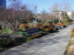GreenwayTrail_DSCF0547