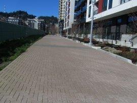 GreenwayTrail_IMG_3492