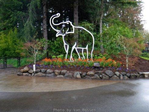 OregonZoo_DSCF1513