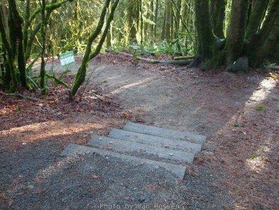 ForestPark_DSCF8606