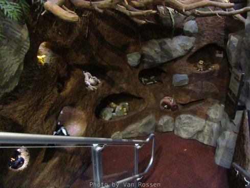 ForestMuseum_IMG_1961