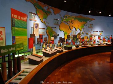 An area showing forests products from around the world.
