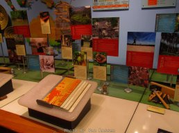 ForestMuseum_IMG_1999