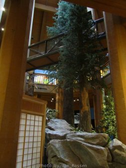 ForestMuseum_IMG_2034