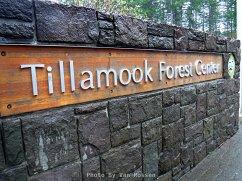 TillamookForestDSCF1302