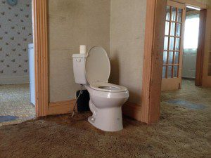 Toilet in living room