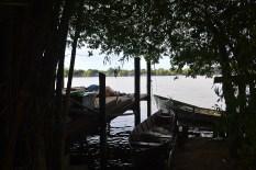 ilha-da-pintada (24)