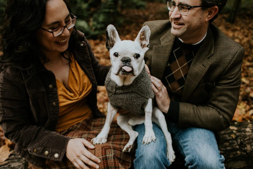 couple with french bulldog wearing sweater