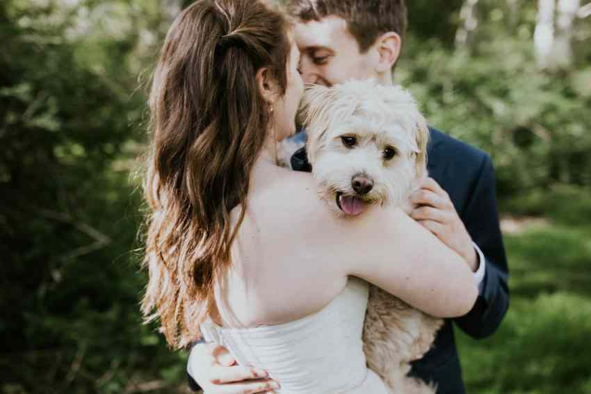 lummi island wedding with dog seattle wedding photographer