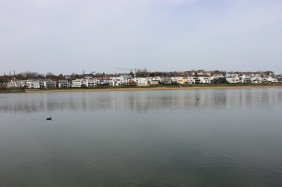 Südhang des Dortmunder PHOENIX Sees | Bildrechte: nickneuwald