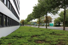 Nortkirchenstraße, künftiges Wilo-Werksgelände | Bildrechte: nickneuwald
