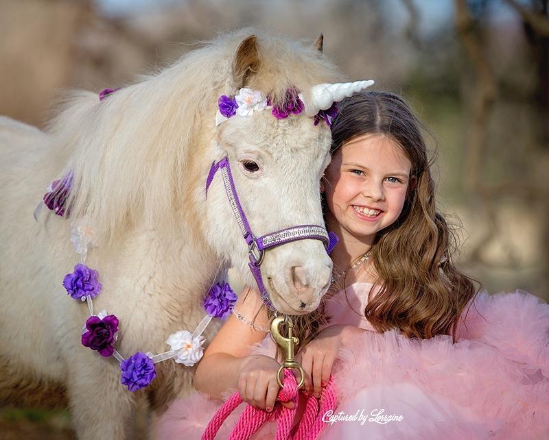 7 Unicorn photo session