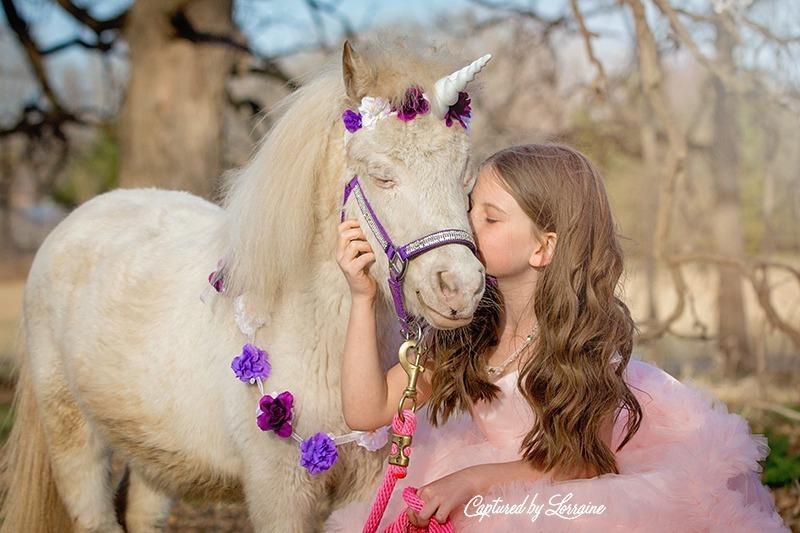 8 Unicorn photo session