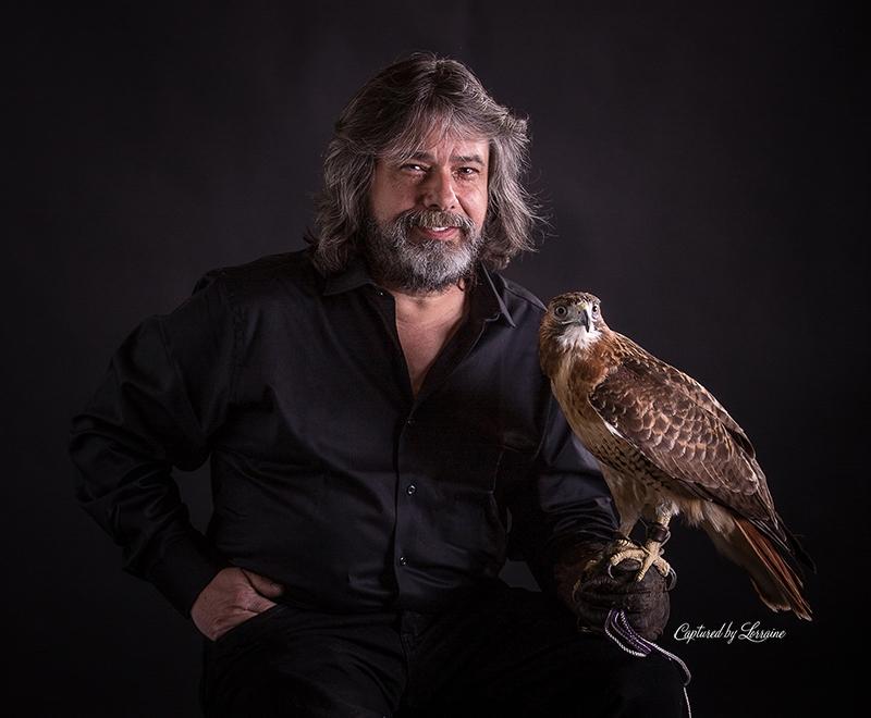 Falconer redtailed hawk (11)