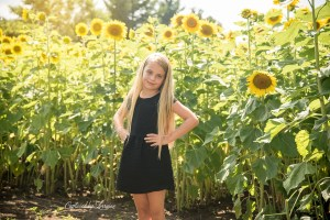 Sunflower Photo Session Illinois