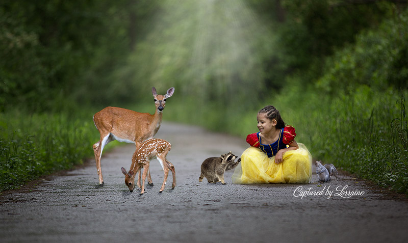 Magical-fairty-tale-photo-illinois