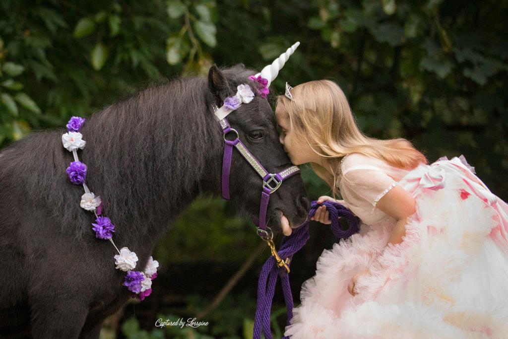 Unicorn-Photo-Session-Hampshire-Illinois