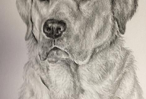Pencil 10