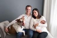 bulldog in newborn family pictures