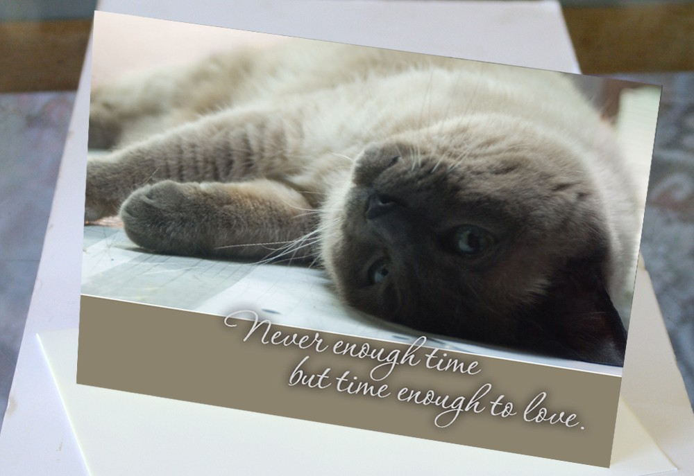 Never Enough Time, But Time Enough to Love