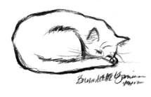011212-MewsetteSleeping