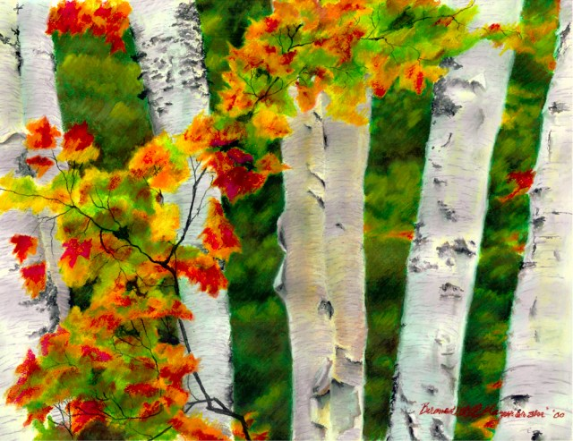 Birches 1, Autumn Showers, oil pastel, 24.5 x 18, 1998 © Bernadette E. Kazmarski