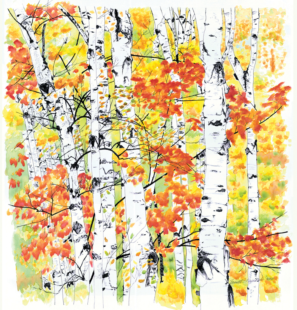 Birches 2: Radiance, watercolor, 22 x 23, 1998 © Bernadette E. Kazmarski