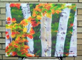 Birches 1, canvas