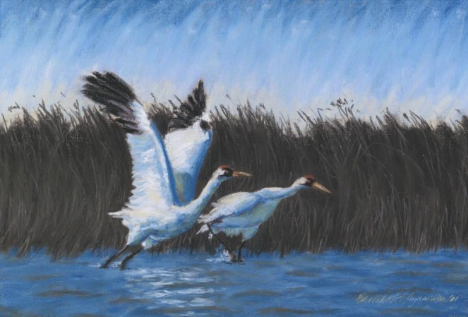 """Taking Flight"", pastel, 18.25"" x 12.25"", 2000 © Bernadette E. Kazmarski"