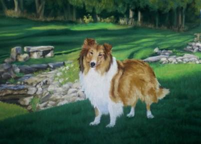 lassie-3
