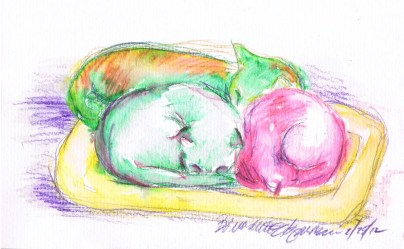 watercolor pencil with washes; 022512-3Cuddled-washes