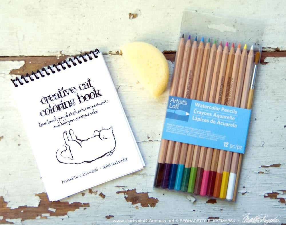 """""""Creative Cat Coloring Book"""" with watercolor pencils and art sponge."""