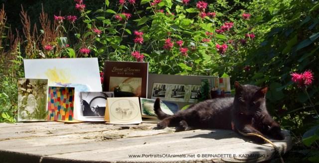 My June 2016 Feline Sampler Box is approved my Mimi!