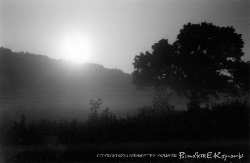 Moonrise and Mist