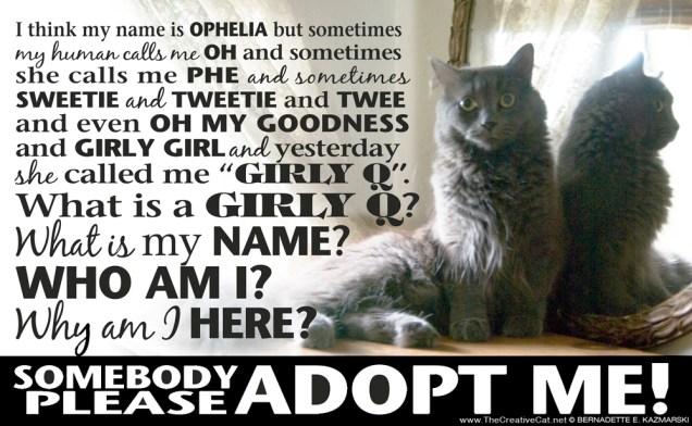 Ophelia-adopt-1000px