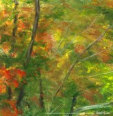 Bright Autumn, through the leaves, left