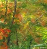 Bright Autumn, through the leaves, left