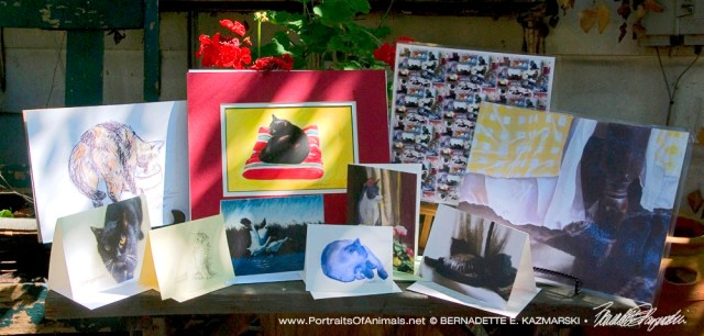 August 2016 Feline Sampler Box