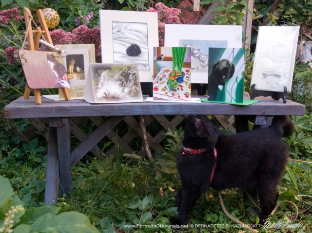 Mimi checks out the new Sampler Box.