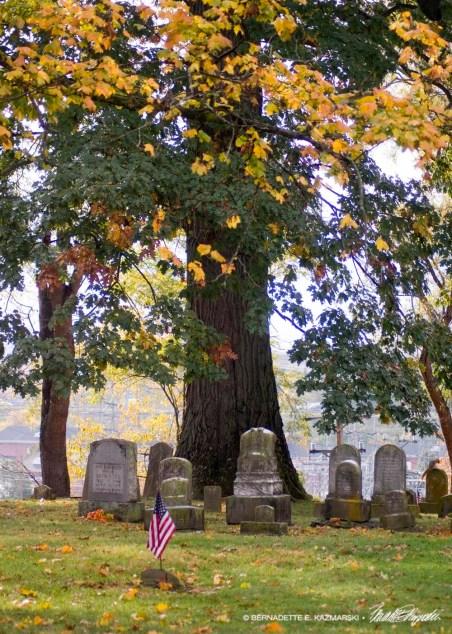 osl-graveyard-1000px