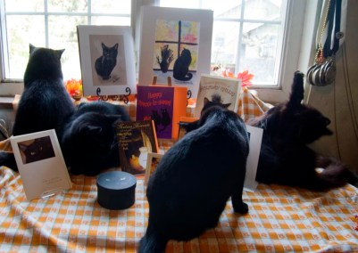 Four black cats settle into the photo.