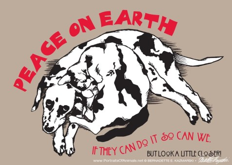 """A Cat Named Peace, A Dog Named Earth"", holiday card"