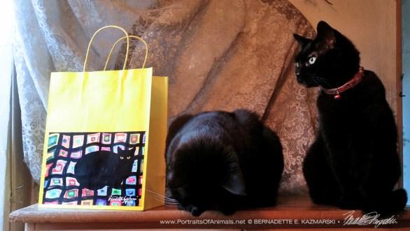 Mewsette on the Afghan gift bag, yellow