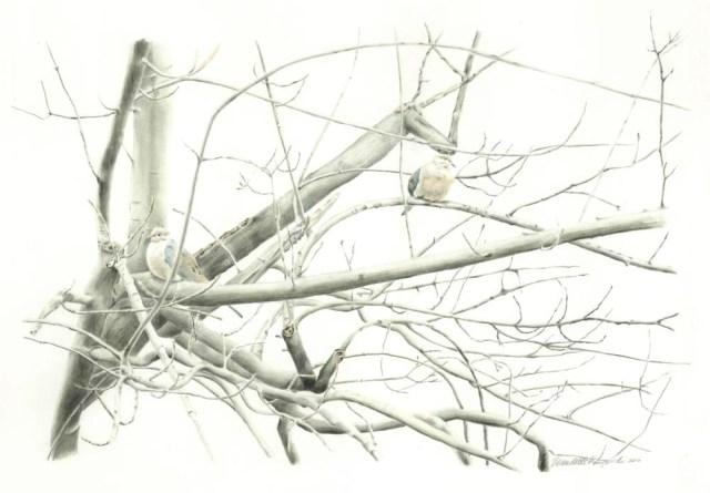 Biding Time, pencil, 15 x 21, 2002 © Bernadette E. Kazmarski